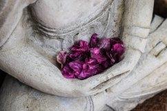 bouddha mains fleurs